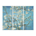 Almond branches in bloom, 1890, Vincent van Gogh Canvas Prints