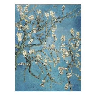 Almond branches in bloom, 1890, Vincent van Gogh Postcard