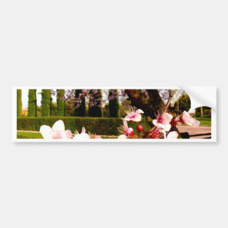 almond flower beauty and peace bumper stickers