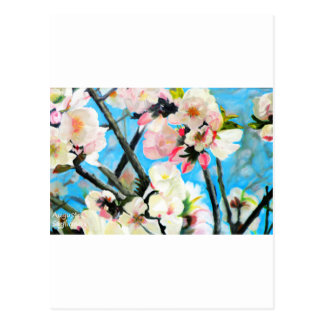 Almond Flowers Postcard