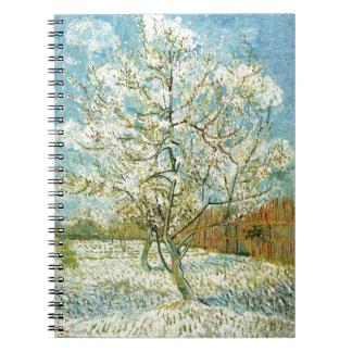 Almond tree - Notebook