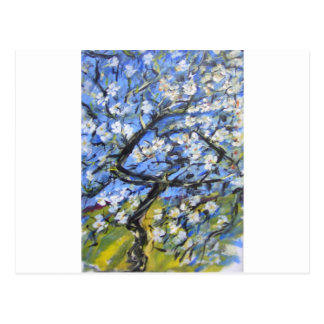 Almond trees postcard