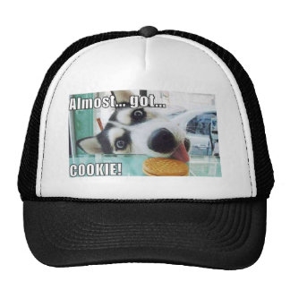"""""""Almost Got Cookie!"""" Black And White Cap"""