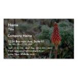 Aloe Flower Business Card