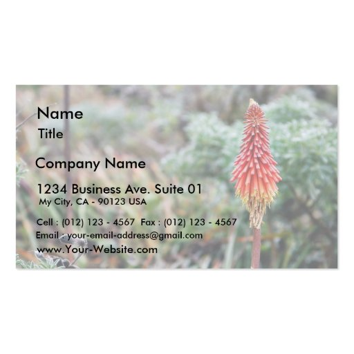 Aloe Flower Double-Sided Standard Business Cards (Pack Of 100)