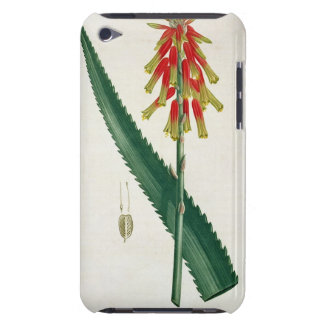 Aloe from 'Phytographie Medicale' by Joseph Roques Barely There iPod Cover