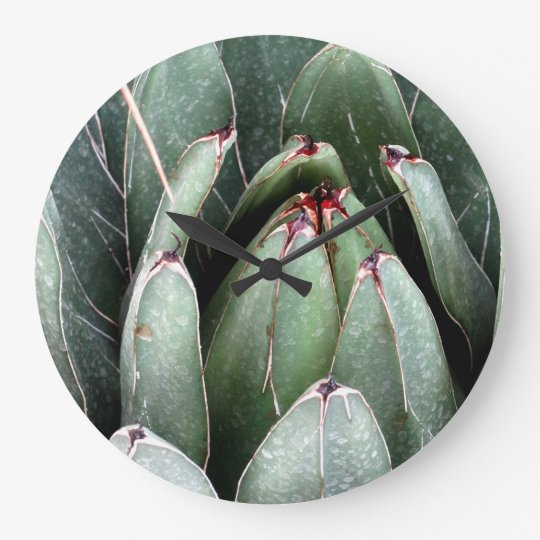 Aloe Green Plant Photo Round (Large) Wall Clock