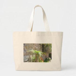 Aloe Plant. Canvas Bags