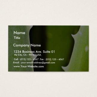 Aloe Vera Business Card