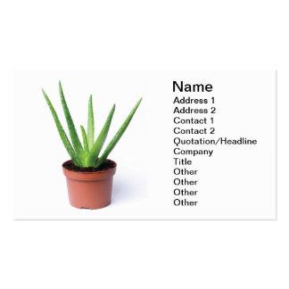 Aloe Vera Business Card Template