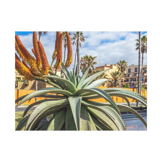 Aloe Vera plant and flowers canvas print