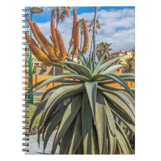 Aloe Vera plant and flowers notebook