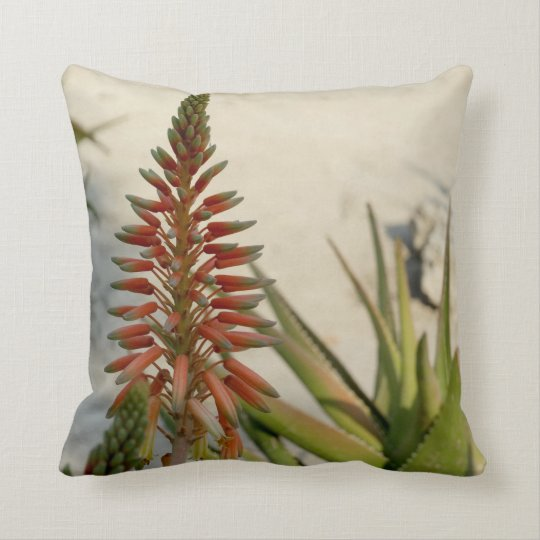 Aloe Vera Plant Photo Throw Cushion 41 cm