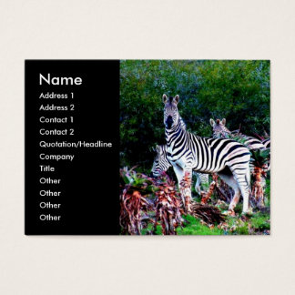 aloe Zebra Business Card