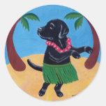 Aloha Black Labrador