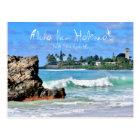 Aloha From Haleiwa Postcard