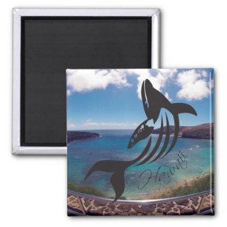 Aloha Hanauma Bay Hawaii Whale Magnets