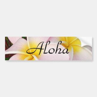 Aloha Hawaiian Frangipani Blossoms Plumerias Bumper Sticker