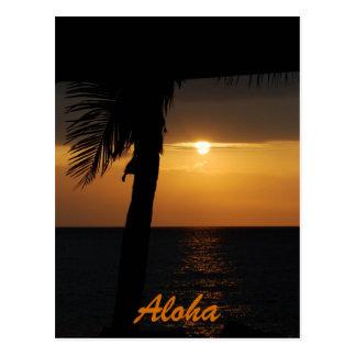 Aloha Hawaiian Sunset Cards Postcard