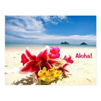 Aloha Post Card