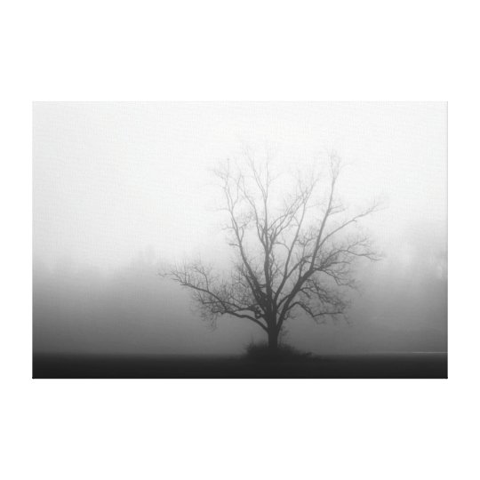 Alone - tree in morning fog Wrapped Canvas