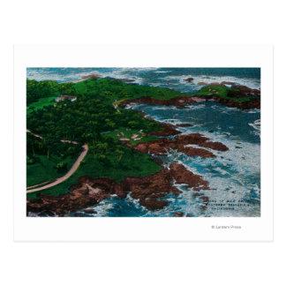 Along 17 Mile Drive on Monterey Peninsula Postcard