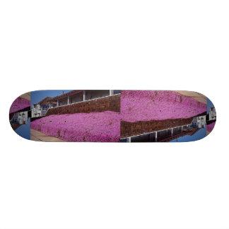 Along Cliff Road, Santa Cruz, California 19.7 Cm Skateboard Deck