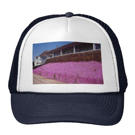 Along Cliff Road, Santa Cruz, California Trucker Hat