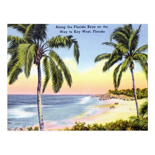 Along the Florida Keys vintage Postcard