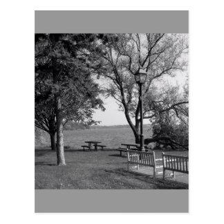 Along The Shore Postcard