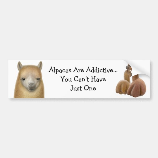 Alpaca Addiction Bumper Sticker