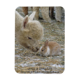 Alpaca and Bunny Kisses! Magnet