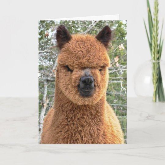 Any Name Age Relation Alpaca LLama funny Personalised Birthday Card