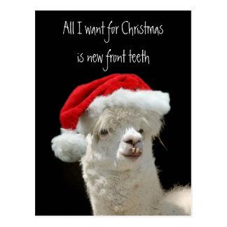 Alpaca Christmas Post Card