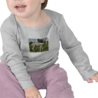 Alpaca Cria T-shirt