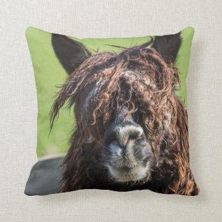 Alpaca farm animals photograph cushion