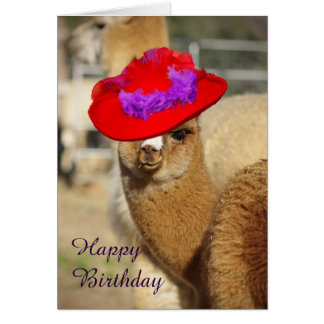 Alpaca Happy Birthday Cards