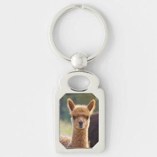 Alpaca Key Chains