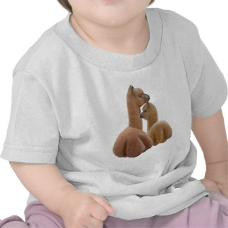 Alpaca Love Infant T-Shirt