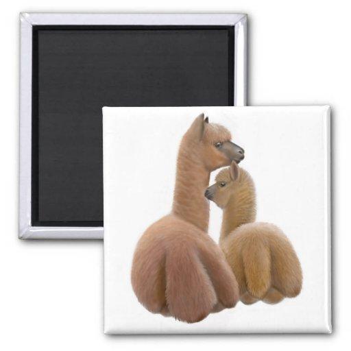 Alpaca Love Magnet