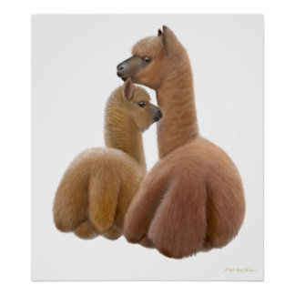 Alpaca Love Print