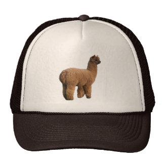 Alpaca Magic Cap Trucker Hat
