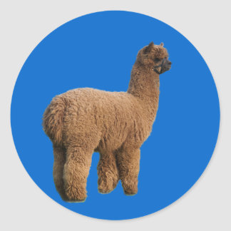 Alpaca Magic Sticker