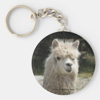 Alpaca, Parque Llaviucu, Ecuador Basic Round Button Key Ring