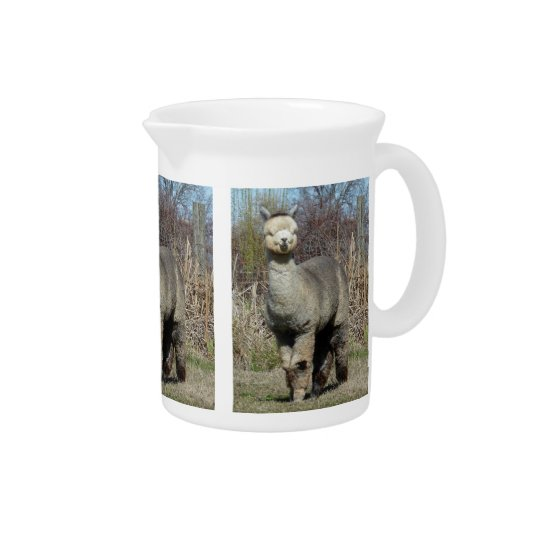 Alpaca Pitcher
