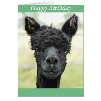 Alpaca Portrait Card