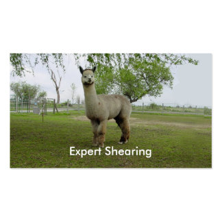 Alpaca Shearing Pack Of Standard Business Cards
