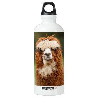 Alpaca SIGG Traveller 0.6L Water Bottle