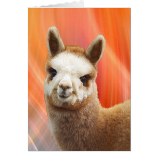 Alpaca Smiling Birthday Cards