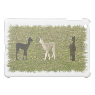Alpaca Trio iPad Mini Covers